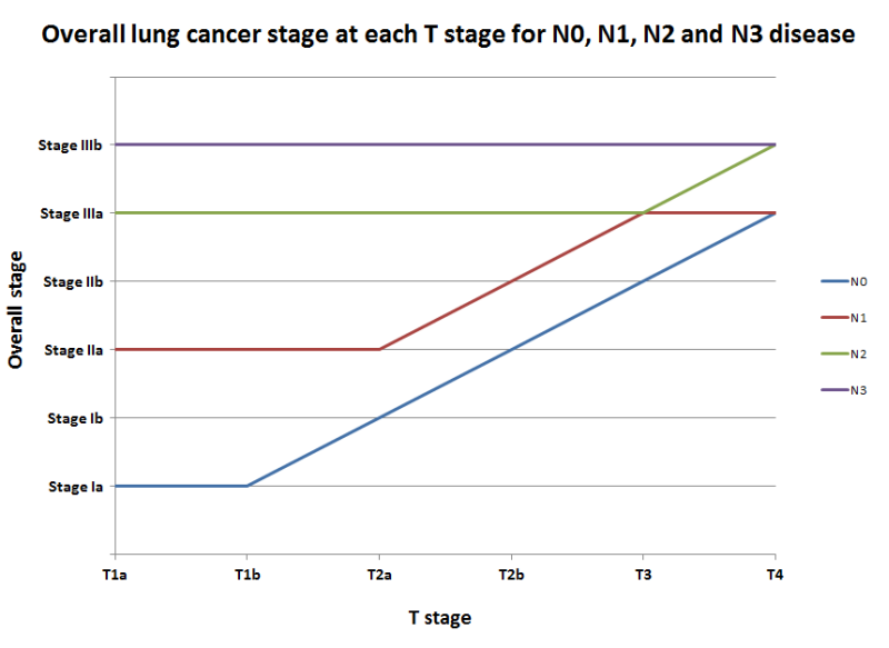 Overall lung cancer stage at each T stage for N0, N1, N2 and N3 disease